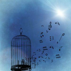 freiheit-fuer-musik-blau